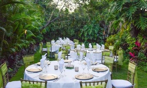 Jungle-Garden